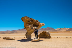 Unter dem Arbol de Piedra, dem steinernen Baum, in Bolivien